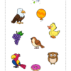 Sort The Birds Worksheet 3